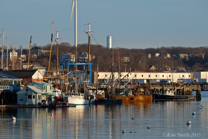 Smith's Cove Rocky Neck Gloucester ©kim Smith 2015