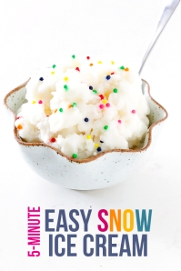 Snow-Ice-Cream-5