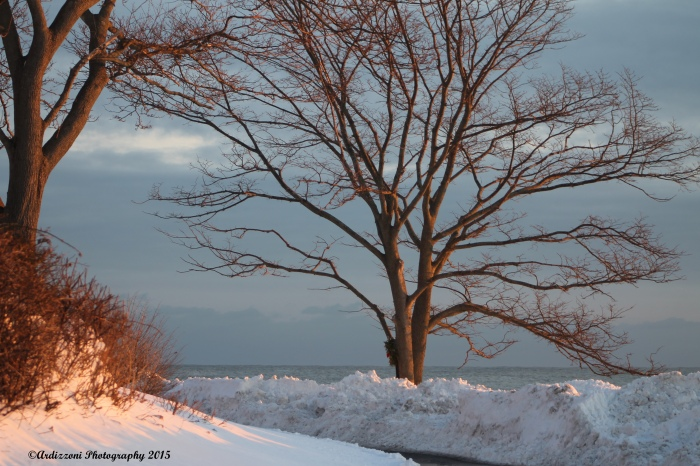 February 10, 2015 snow, sun, winter