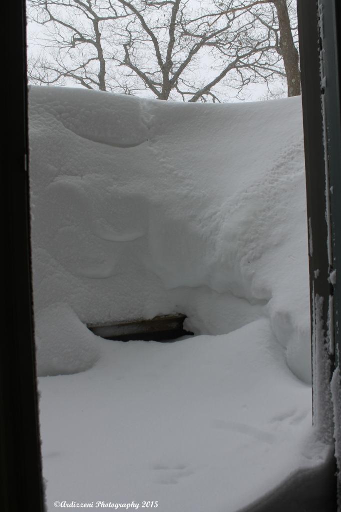 February 15, 2015 front door