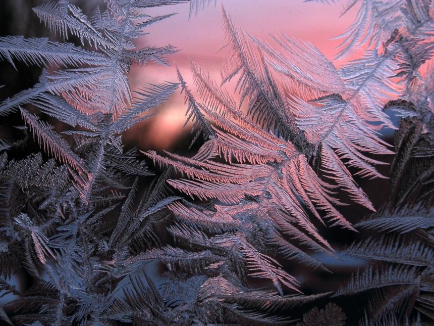 IceCrystalSunrise_0285