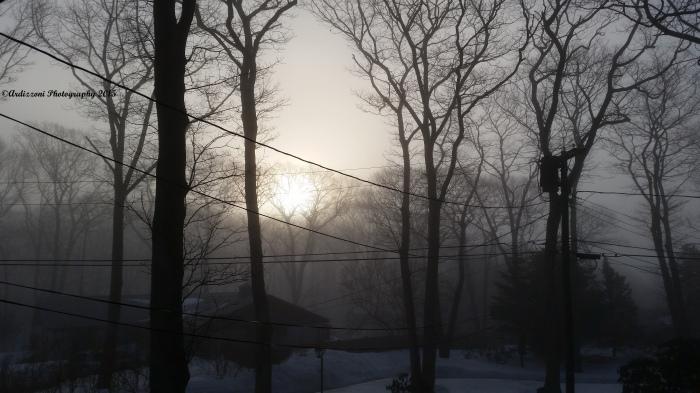20150311_075641 foggy