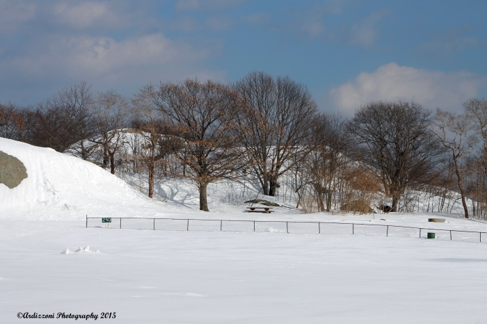 March 2, 2015 Stage Fort Park base ball diamond