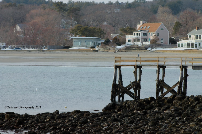 March 21, 2015 low tide at Magnolia Pier