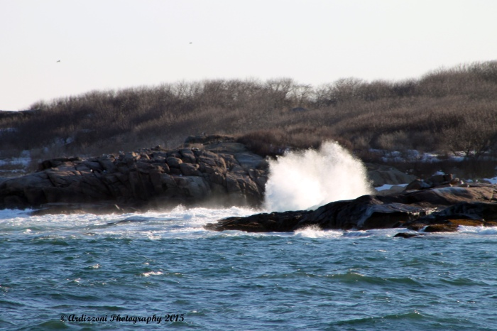 March 29, 2015 Kettle Cove