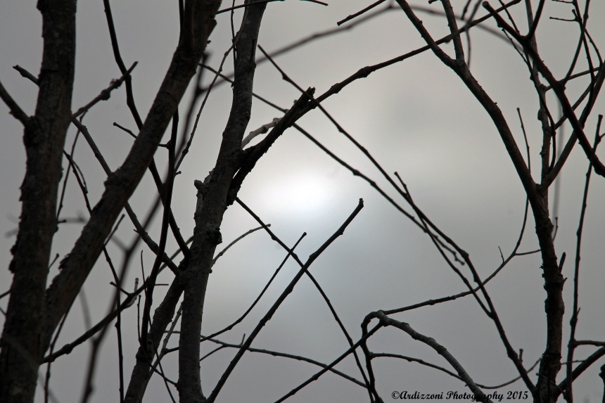 April 14, 2015 sun breaking through
