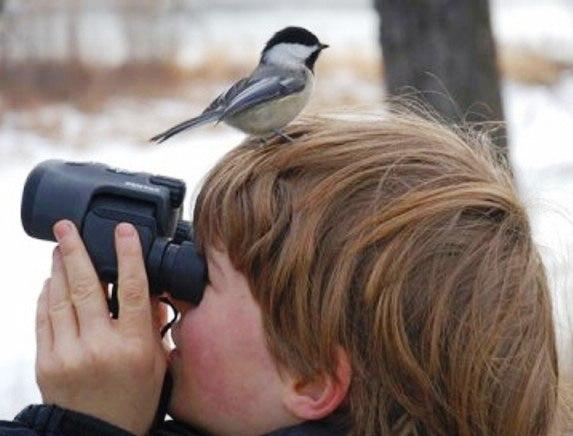 boy birding