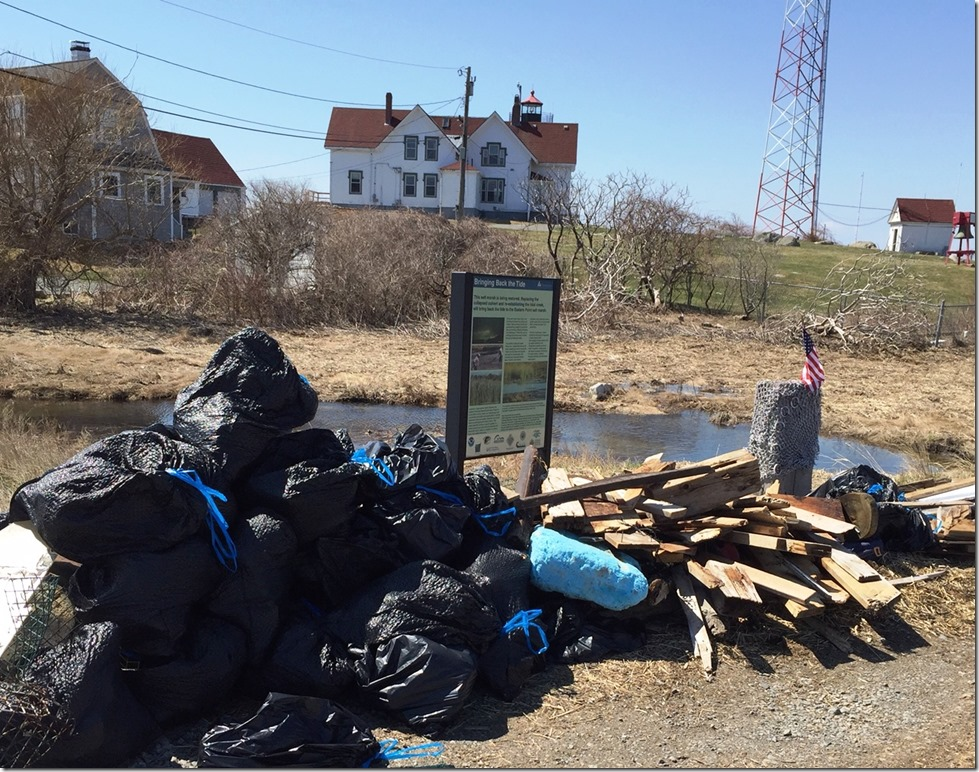 Eastern Point Clean Up