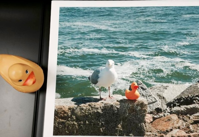 This is the first moment when Homie's eye (just his left one) locked onto Rubber Duck.