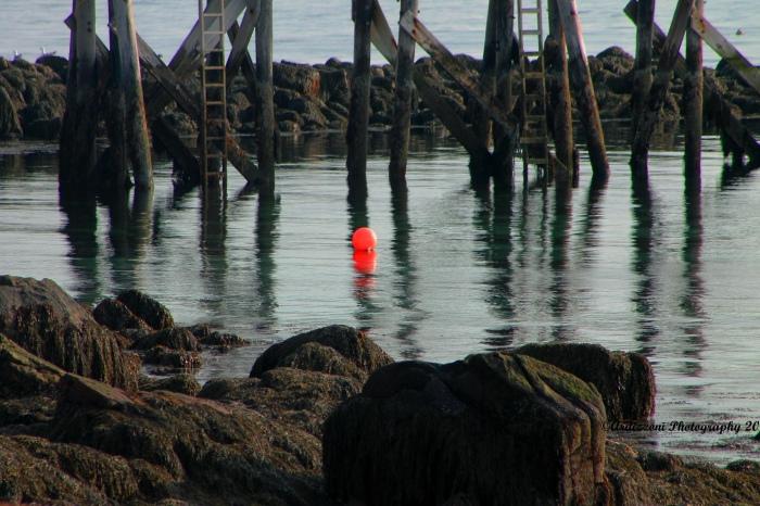 Lonely mooring buoy