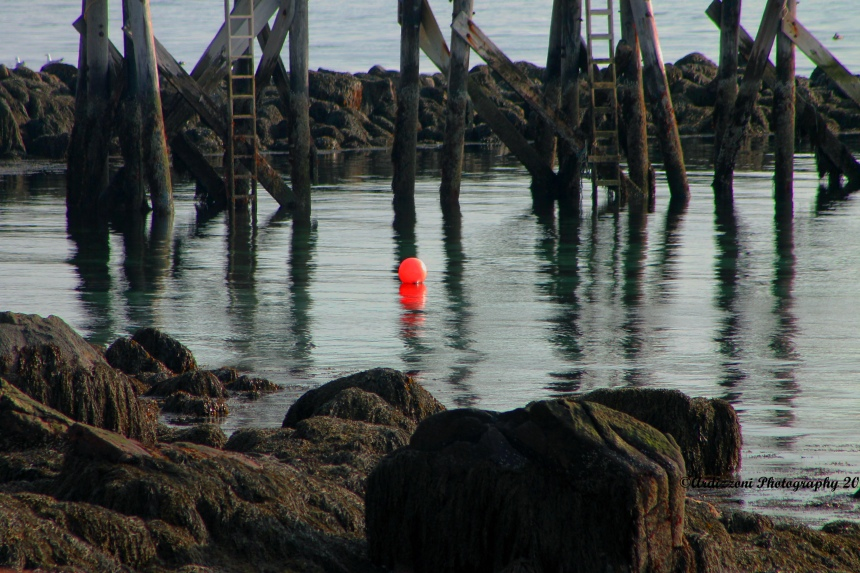 Lonely mooring buoy