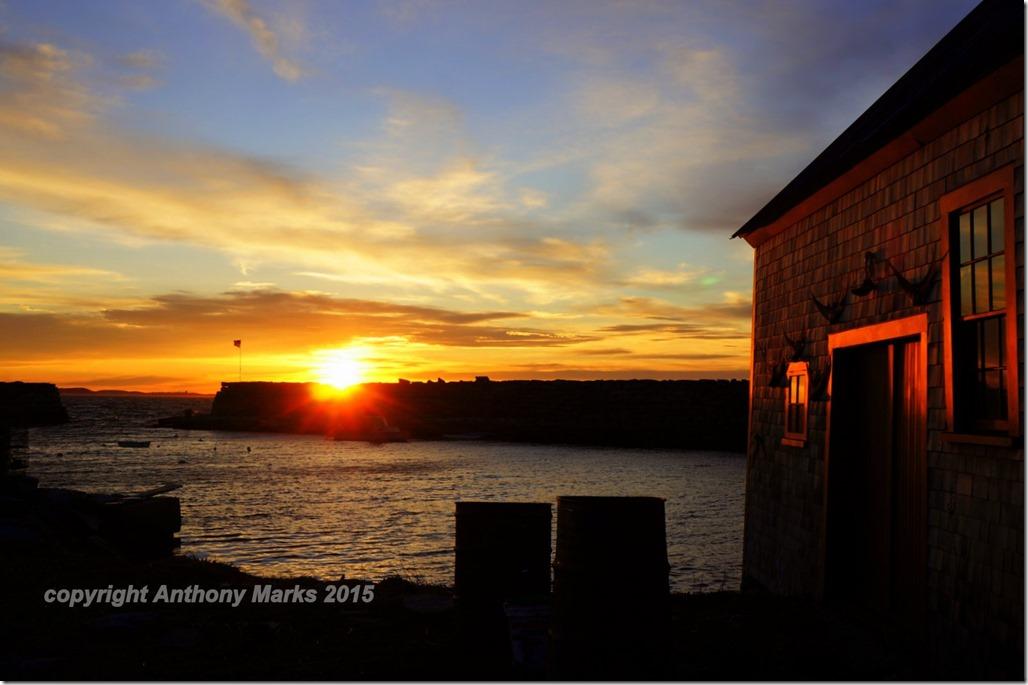 Lanes Cove Sunset