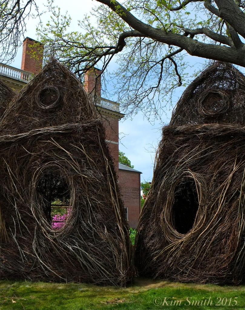 Patrick Dougherty Stickwork Peabody Essex -5 w ©Kim Smith 2015