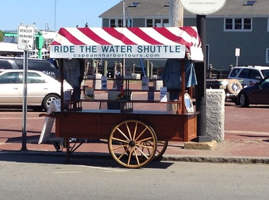 Water Shuttle Cart at St. Peter's