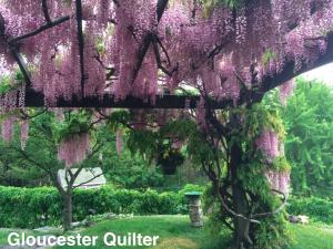 GloucesterQuilter_Wisteria2015
