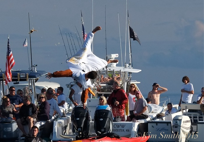 Greasy Pole Gloucester -11 ©Kim Smith 2015