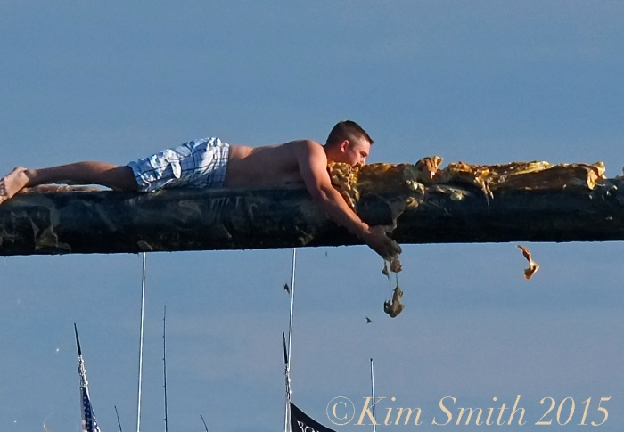 Greasy Pole Gloucester -7 ©Kim Smith 2015