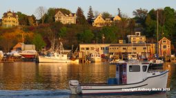 Smith Cove, East Gloucester - photos from Anthony Marks