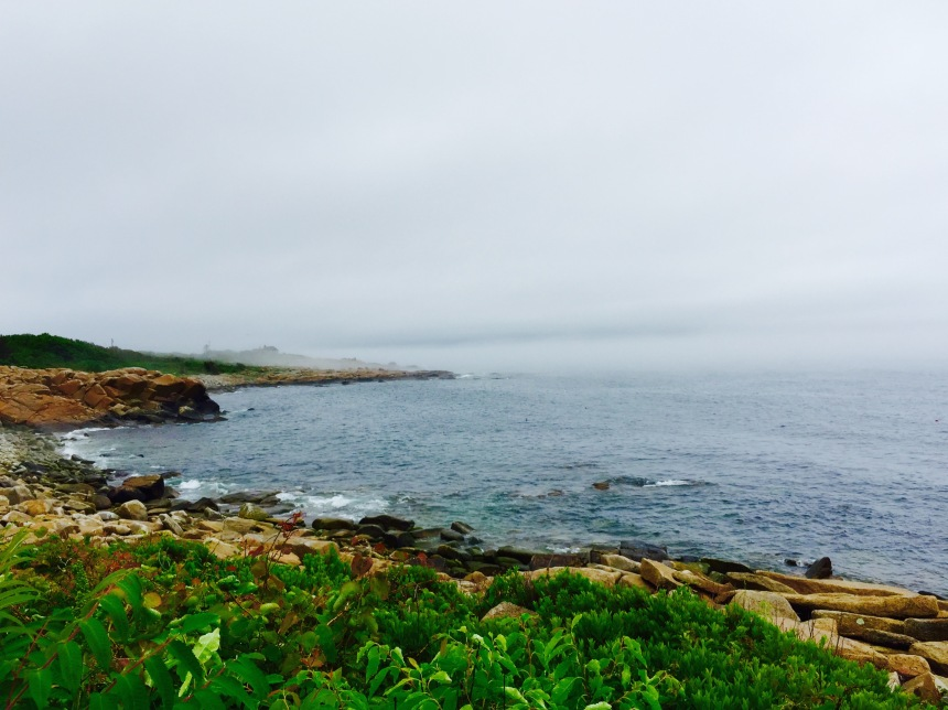Fog offshore at 12:38 PM June 21, 2015, the Summer Solstice.