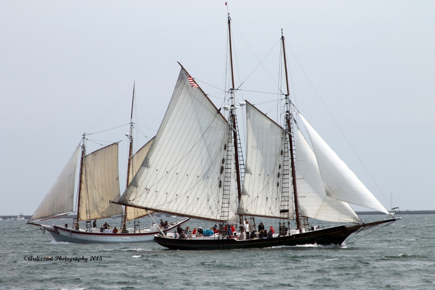 June 8, 2015 THe Lannon and The Ardelle in Gloucester Harbor