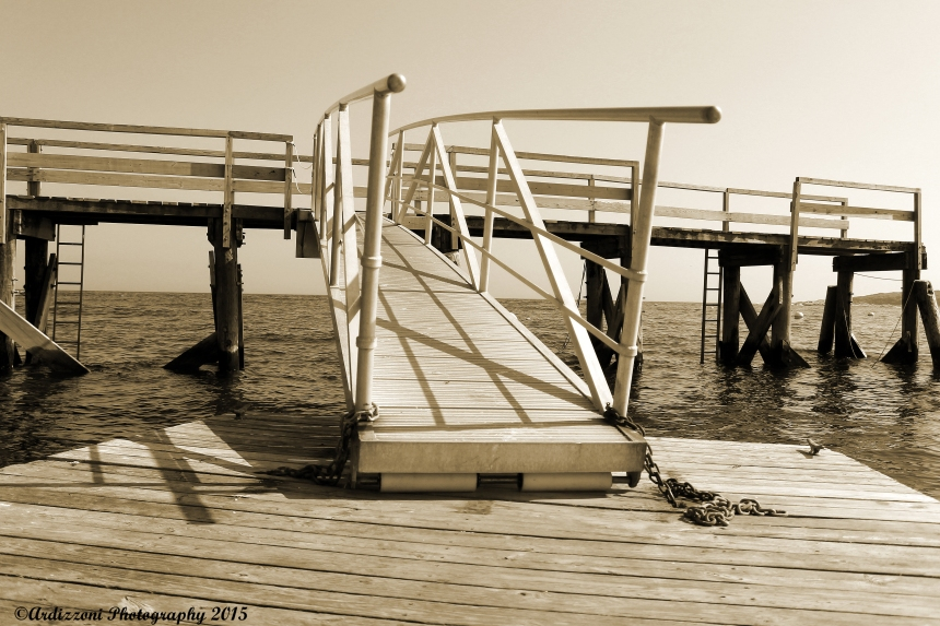 June 9, 2015 abcd 009 Pier and Raft
