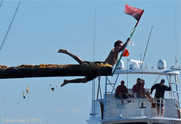 Lenny Taormina Friday Greasy Pole Champion -1 ©Kim Smith 2015