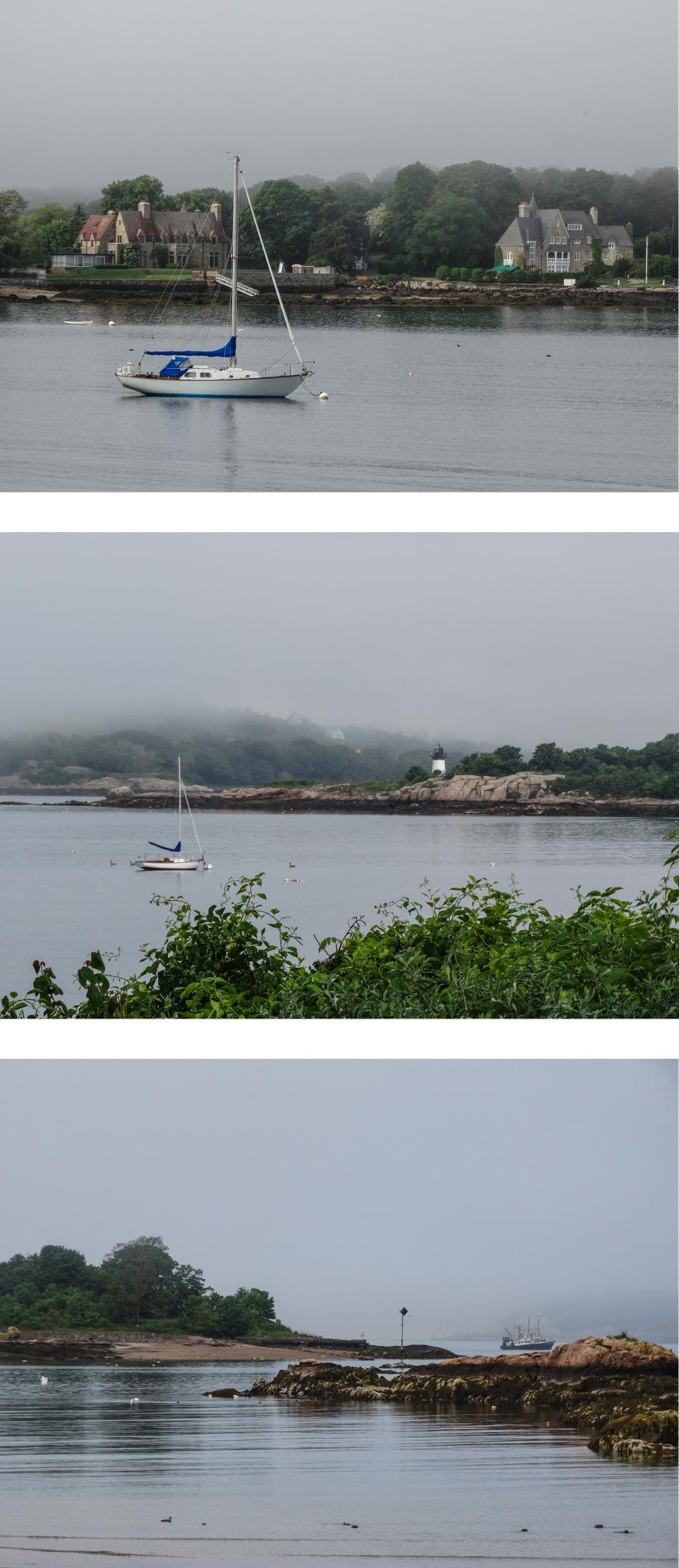 love a foggy morning