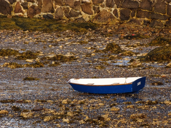 blue boat at low tide