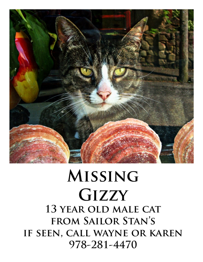 gizzy missing