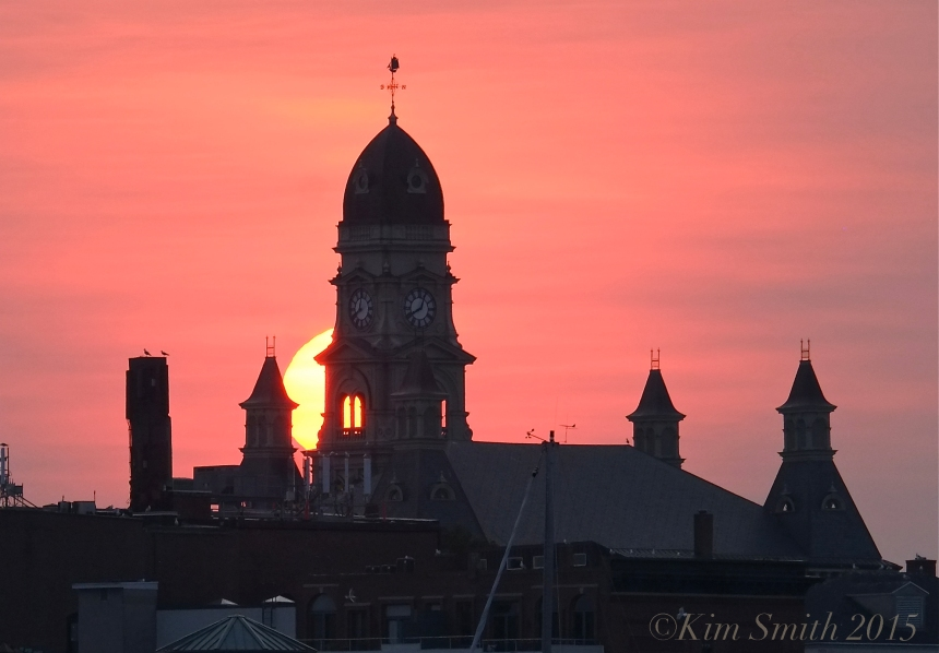 Gloucester City hall Sunset -4 ©Kim Smith 2015