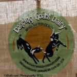 Jully 2, 2015 Dancing Goat Dairy