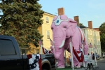 July 3, 2015 Pink elephant on the route