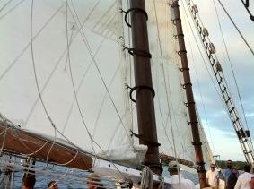 Lannon_Cigar_Rum_Cruise_2015=21-860px