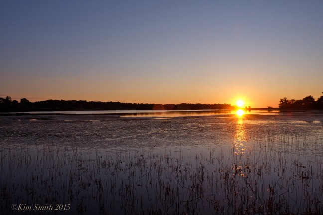 Niles Pond Sunrise ©Kim Smith 2015