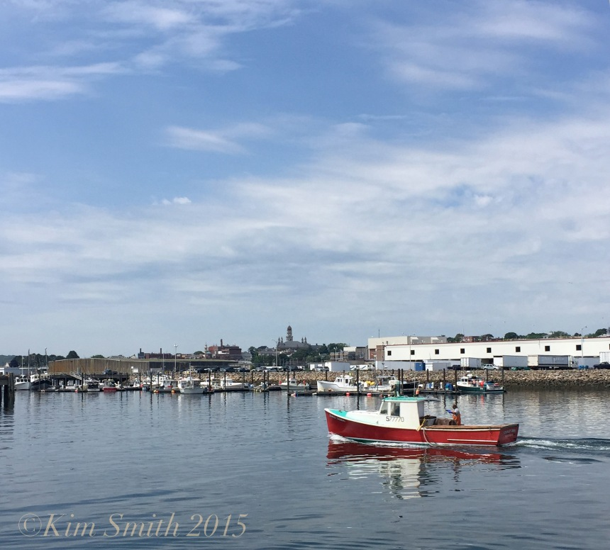 Stanley Thomas Lobster Boat ©Kim Smith 2015 copy