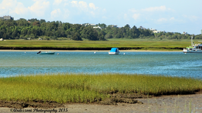 August 9, 2015 Corliss Landing