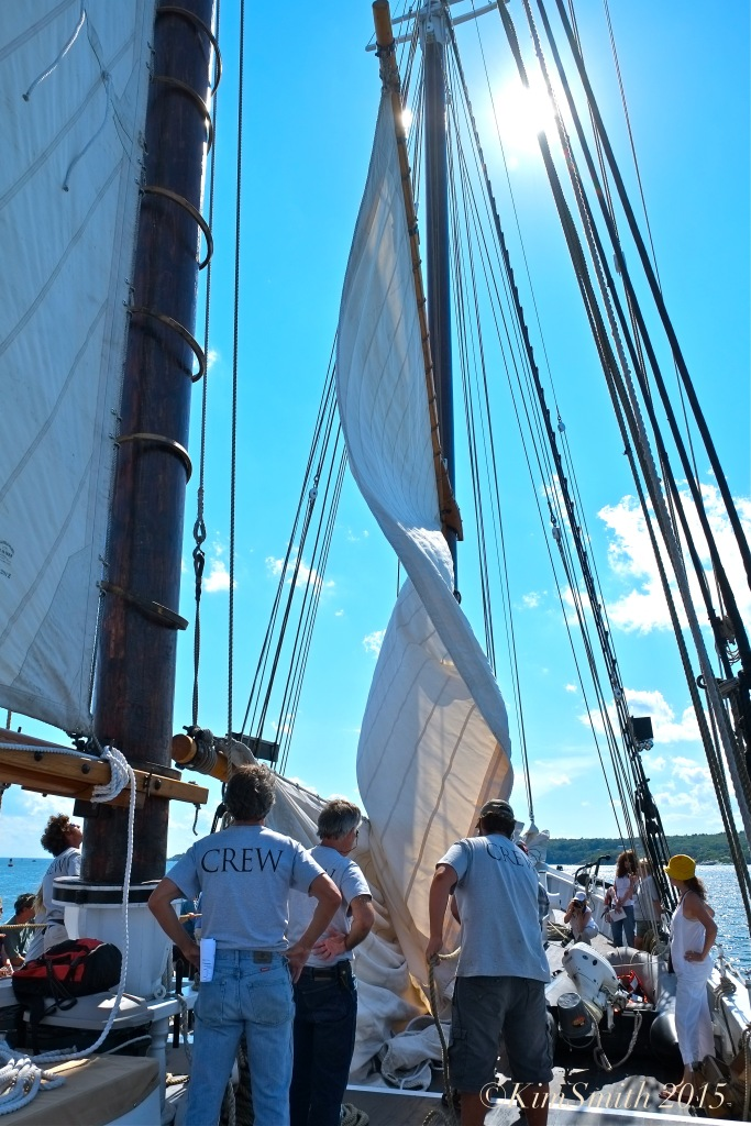 Schooner Adventure Gloucester August 5th -16 ©Kim Smith 2015