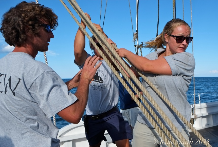 Schooner Adventure Gloucester August 5th -21 ©Kim Smith 2015