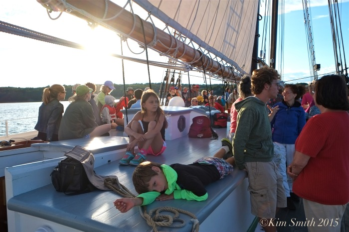 Schooner Adventure Gloucester August 5th -26 ©Kim Smith 2015
