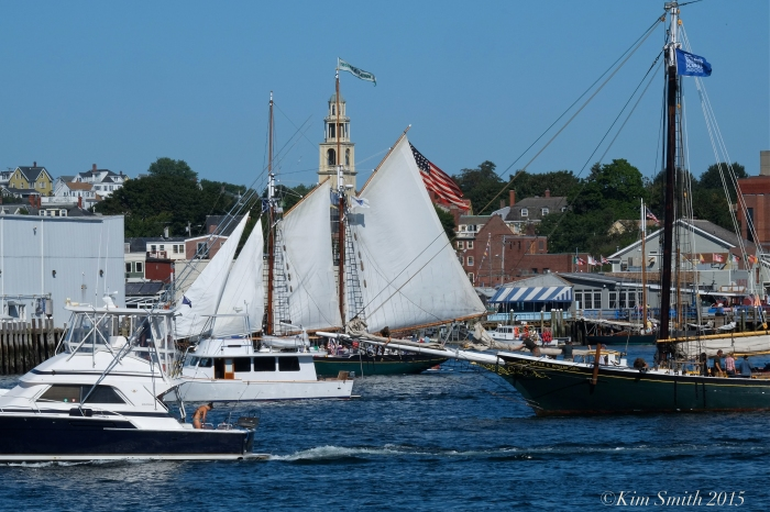 Schooner Festival Parade of Sails Gloucester ©Kim Smith 2015
