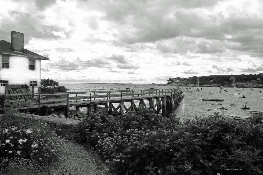 September 14, 2015 black and white magnolia pier