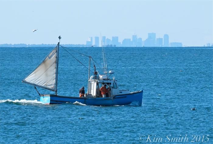 Fishing boat with sail ©Kim Smith 2015