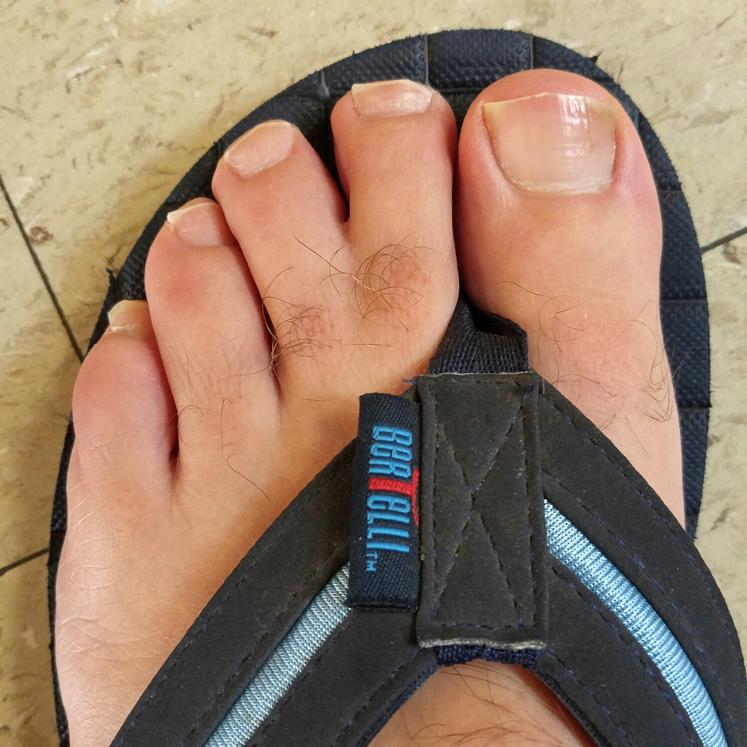 i'm so grateful my webbed toes are not where my flip flop tong, Skeleton