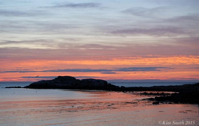 Brace Cove Rock Sunrise Gloucester ©Kim Smith 2015