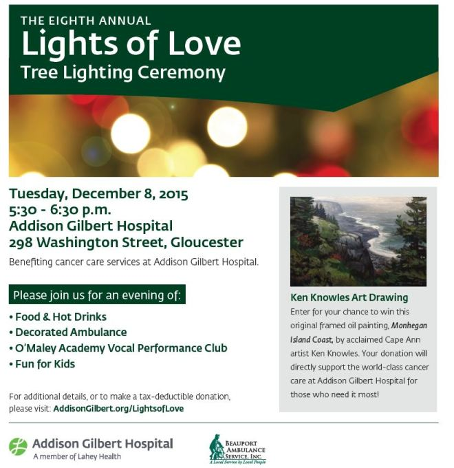 Lights of Love 2015