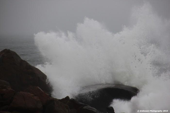 November 11, 2015 3 hours after high tide on Wednesday