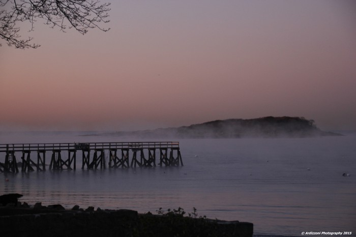 November 18, 2015 Good Morning Magnolia on a cold morning