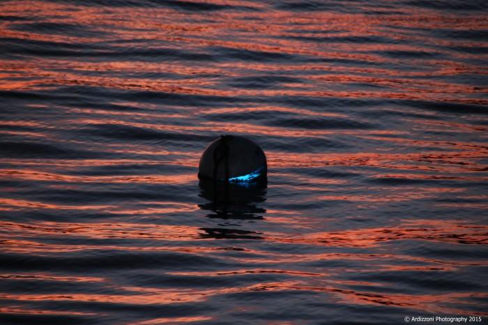 november 21, 2015 reflection on lone mooring