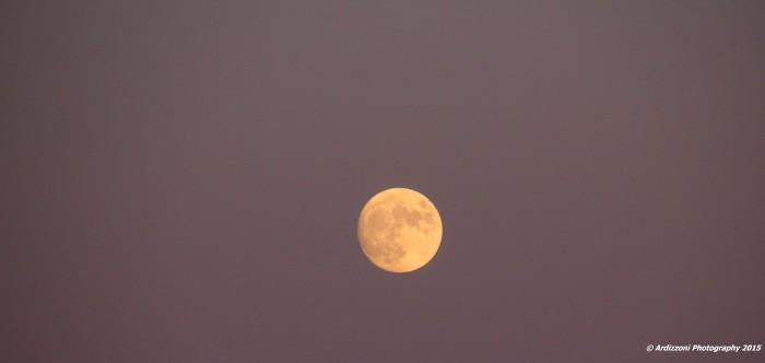 November 24, 2015 Good Night Moon