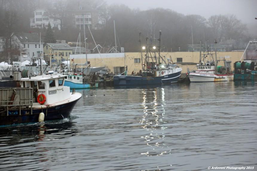 December 14, 2015 State Pier in the fog